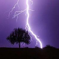 La colère de Zeus - Foudre et Prunus, mabellephoto.com