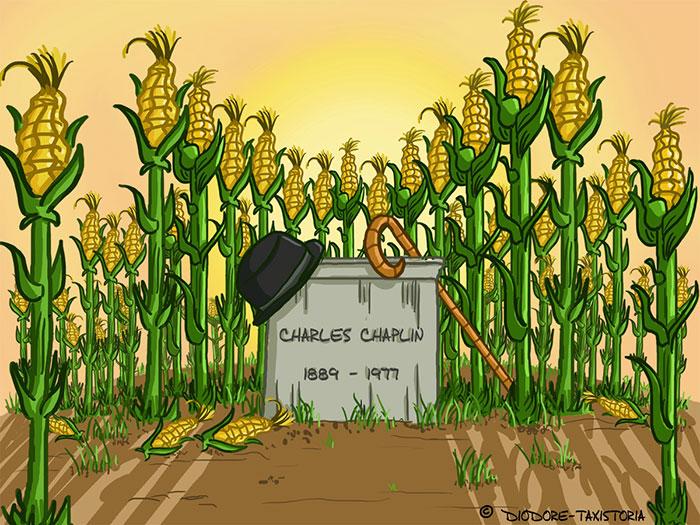 Chaplin enterré dans un champ de maïs
