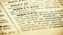 dictionnaire-vignette