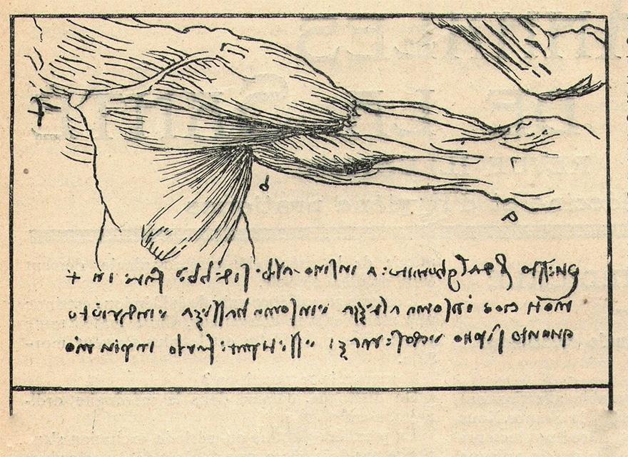 ecriture-speculaire-leonard-de-vinci
