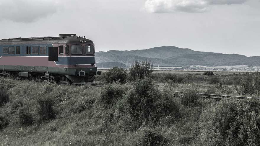 Les passagers clandestins dans le domaine des transports en commun